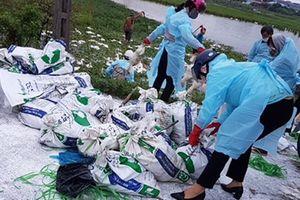 Dịch cúm gia cầm A/H5N6 cực độc tái phát tại Hải Phòng