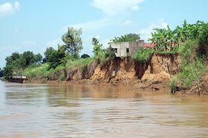 Sạt lở sông Đồng Nai ngày càng nghiêm trọng