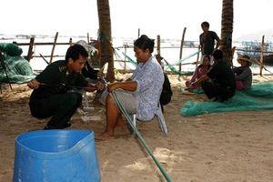 Sĩ quan trẻ BĐBP Phú Yên: Khát vọng cống hiến