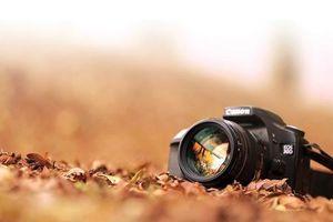 Canon: Lựa bước theo thời