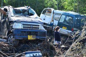 18 người chết do bão Wipha ở Nhật Bản