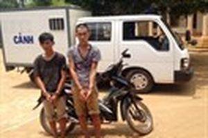 Bắt hai kẻ cướp giật tài sản