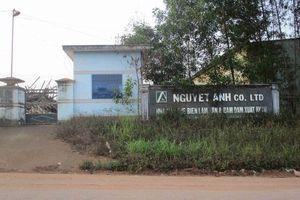 Bình Định: Ba doanh nghiệp tại Cụm Công nghiệp Bồng Sơn bị 'tuýt còi' vì chưa thực hiện tốt bảo vệ môi trường