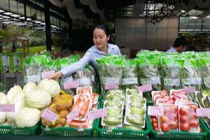 Saigon Co.op công bố điểm bán sản phẩm an toàn và VietGAP phục vụ Tết