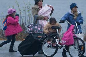 Na Uy cho tiền người tị nạn về nước