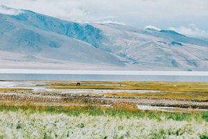 Theo chân cô nàng mê phượt khám phá 'Tiểu Tây Tạng' Ấn Độ
