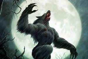 5 câu chuyện không thể không tin về sự tồn tại của người sói