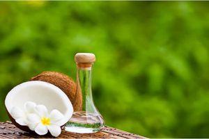 Khi nào không nên dùng dầu dừa dưỡng tóc?