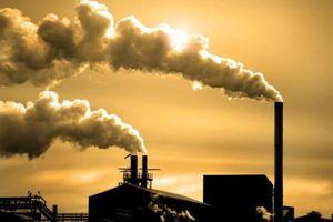 Áp lực ô nhiễm môi trường nghiêm trọng giữa 'vòng vây' dự án