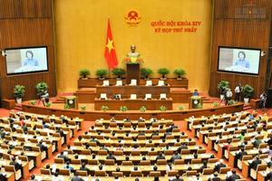 Quốc hội Việt Nam tích cực thực hiện các mục tiêu phát triển bền vững