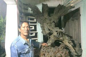 Người đàn ông kiếm cả trăm triệu nhờ gỗ lũa