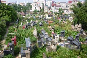 Bán đấu giá đất nghĩa trang Bình Hưng Hòa để xây công viên