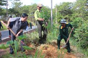 Đà Lạt - Lâm Đồng: 'Dân vận tập trung' tạo sức lan tỏa