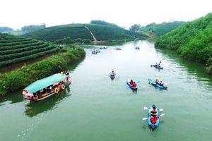 Khám phá thiên đường đảo chè ở Nghệ An