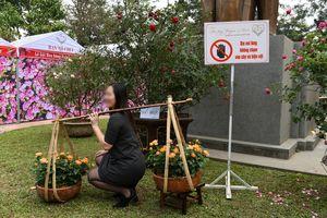 Lễ hội hoa hồng Bulgaria gây thất vọng vì khác xa quảng cáo