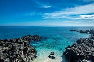 'Đảo Jeju phiên bản Việt' khiến giới trẻ không thể ngồi yên