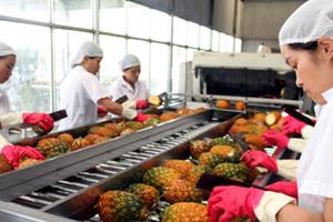 Nông sản: Điểm sáng trong giao lưu thương mại Việt Nam - Hàn Quốc