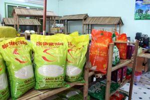 Thương hiệu gạo Việt phải được định vị từ chất lượng lúa giống