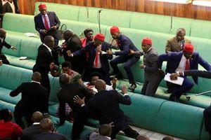 Nghị sĩ Uganda xé áo, vác ghế đánh nhau giữa Quốc hội