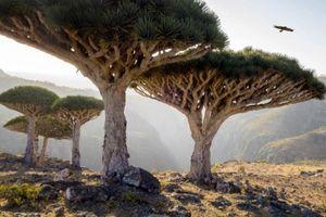 15 địa điểm đẹp siêu thực như ở hành tinh khác