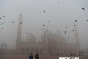 Ấn Độ: Mật độ các hạt bụi tại New Delhi cao gấp 10 lần cho phép