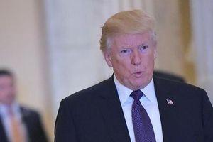 'Lập lờ' Lầu Năm Góc tweet kêu gọi Tổng thống Trump từ chức