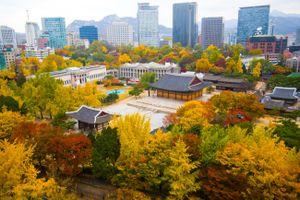 Trải nghiệm văn hóa Hàn Quốc ngay tại Việt Nam