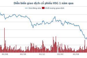 Doanh nghiệp của ông chủ Tôn Hoa Sen muốn gom thêm 1 triệu cổ phiếu HSG