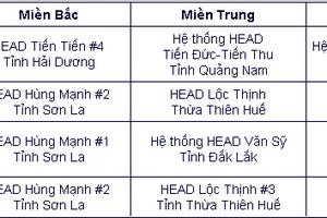 Honda Việt Nam thúc đẩy hoạt động LXAT thông qua các HEAD