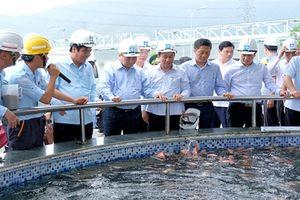 Formosa Hà Tĩnh ước tính doanh thu 3,5 tỷ USD/năm