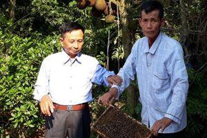 Thương binh Bắc Giang trên 'mặt trận' làm vườn