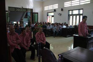 Trả hồ sơ điều tra bổ sung đại án phá rừng tại Bình Định