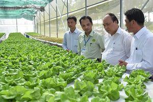 Thủ tướng đặt hàng ngành nông nghiệp 10 năm nữa vào top 15 thế giới