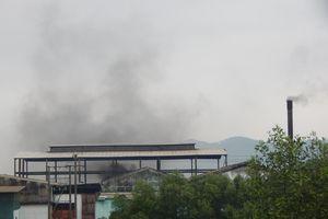 Thừa Thiên Huế: Nhà máy rác 'hành' dân đến bao giờ?