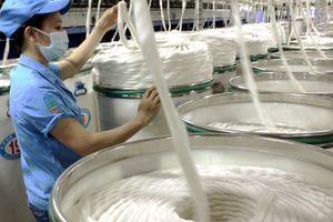 Dệt may xác định được 20 mặt hàng có cơ hội tăng xuất khẩu sang Mỹ