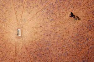 Nông dân Úc khốn đốn vì hạn hán