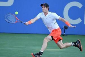 Cựu số 1 thế giới Andy Murray đang trở lại thành công tại giải Citi Open