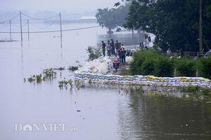 Hà Nội: Vẫn còn hơn 3.600 hộ dân huyện Chương Mỹ bị ngập
