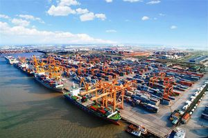 Thủ tướng yêu cầu nghiên cứu phát triển cảng biển theo hướng 'cảng xanh' như báo nêu