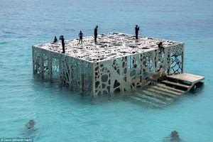 Phòng trưng bày nghệ thuật thủy triều độc đáo ở Maldives