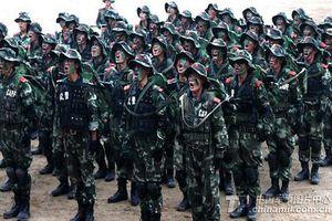 Trung Quốc sẽ giúp Syria trong chiến dịch quân sự tại Idlib?