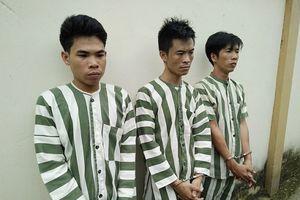 Đồng Nai: Bắt giữ nhóm đối tượng cướp ôtô giữa đường