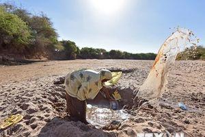 Các nước nghèo mất hàng chục tỷ USD mỗi năm do nhiệt độ tăng