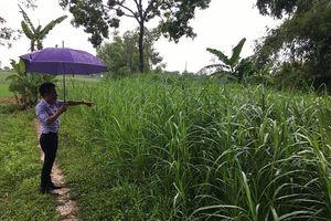 Thọ Xuân (Thanh Hóa): Người dân bỗng dưng mất đất