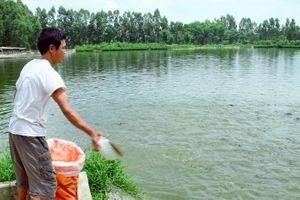 Ngành nuôi trồng thủy sản của Hà Nội: Vượt rào cản để phát triển bền vững