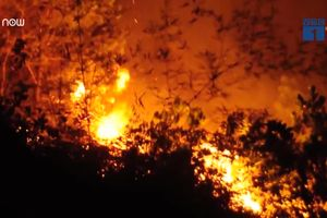 Hà Tĩnh: Rừng thông cháy ngùn ngụt, hàng trăm người cứu hỏa trong đêm