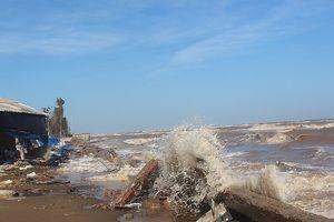 Sạt lở biển Cồn Bửng 'nuốt' cả rừng phòng hộ