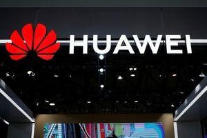 Phe Dân chủ Mỹ không dùng thiết bị của Huawei, ZTE vì lo ngại an ninh