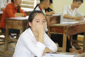 Nghệ An: Không phát hiện tiêu cực, bất thường qua chấm phúc khảo gần 1.100 bài thi