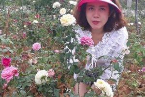Từ trồng cho vui để ngắm, giờ có vườn hồng đáng giá vài tỷ đồng